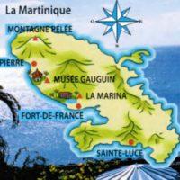 12 урок  Allons a la Martinique